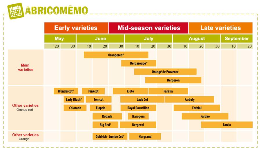 Early varieties  Mid-season varieties Late varieties May June July August September