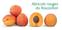 Abricots rouges du Roussillon