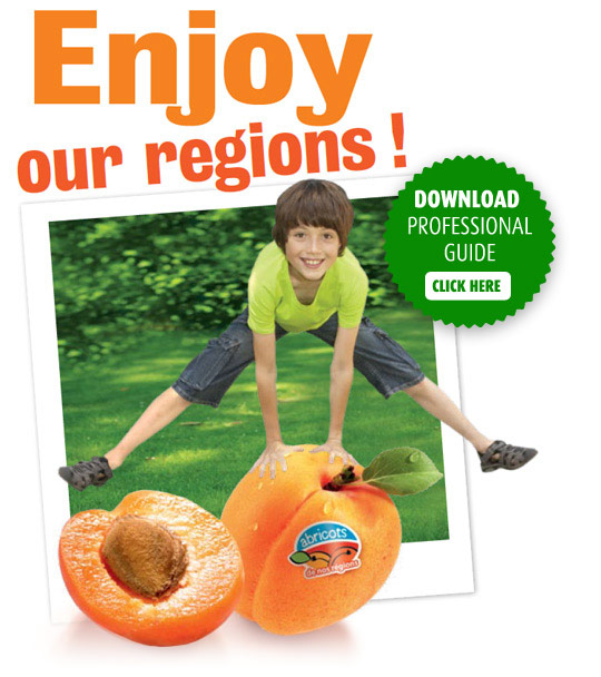 Enjoy our regions !