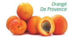 Abricots en vrac de la variété Orangé de Provence. Un des abricots est coupé en 2, laissant apparaitre son noyau